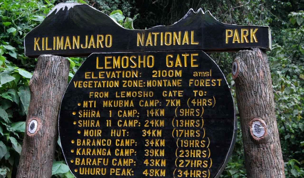 Image result for lemosho gate